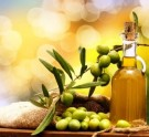 olivki i olivkovoe maslo